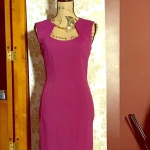 Cache Sheath Dress with Gold Necklace